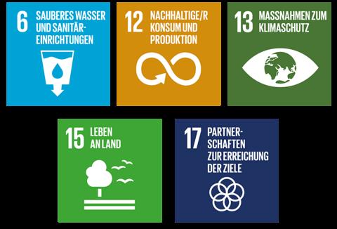 Global Goals Wertschoepfungskette.png