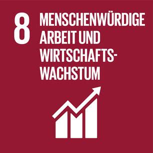 SDG icon DE 08.jpg
