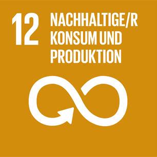 SDG icon DE 12.jpg