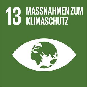 SDG icon DE 13.jpg