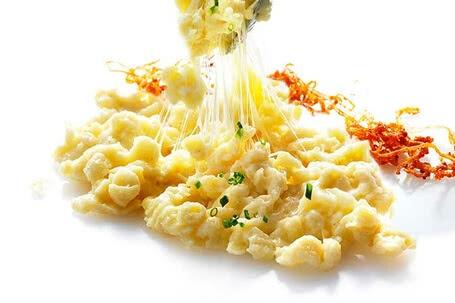 Rezepte mit Bio-Käse